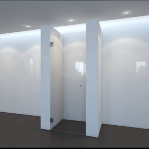 Душевая дверь kl-110